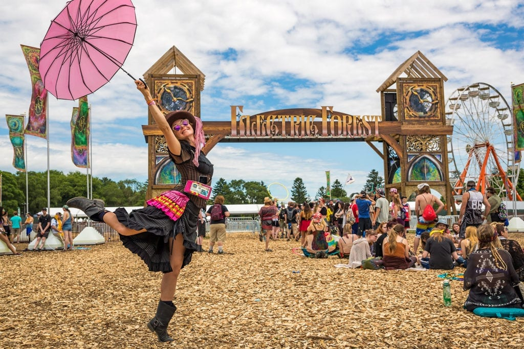 The Spirit Of Electric Forest